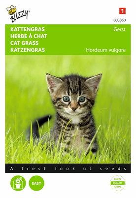 Kattengras zaden, Gerst