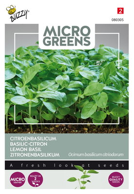 Citroenbasilicum Zaden, Micro Greens