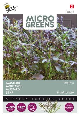 Mosterd zaden, Micro greens