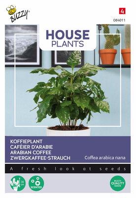Koffieplant zaden, Coffea Arabica nana