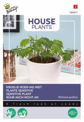 Kruidje-roer-me-niet zaden, Mimosa pudica