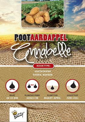 Pootaardappel, Annabelle (1KG)