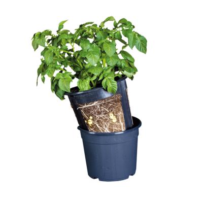 Kweekpot Aardappels, Aardappelpot (Esschert's Garden)