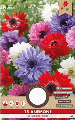 Anemoon bloembollen, St. Briged Mix (voor-en najaar)