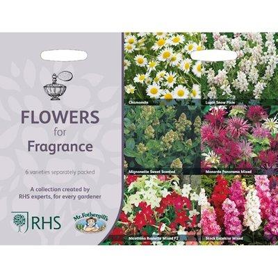 Geurende bloemen, Collectie van 6