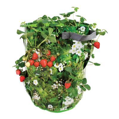 Aardbeien/kruiden kweekzak (39 liter)
