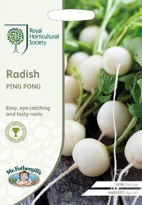 Radijs zaden, Ping Pong (wit)