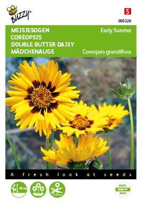 Meisjesogen Zaden, Early Sunrise (Coreopsis grandiflora)