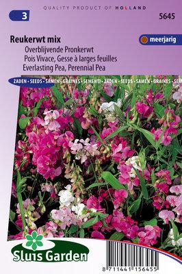 Reukerwt zaden, Meerjarig mix (Lathyrus latifolius)