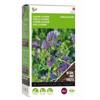 Luzerne klaver zaden, Groenbemester (200 gram)