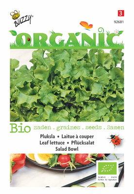 Sla Zaden, Pluksla Salad Bowl groen   BIO