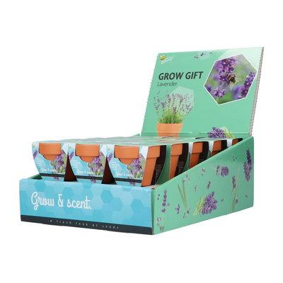 Cadeaubox, Grow Gifts (30 stuks)