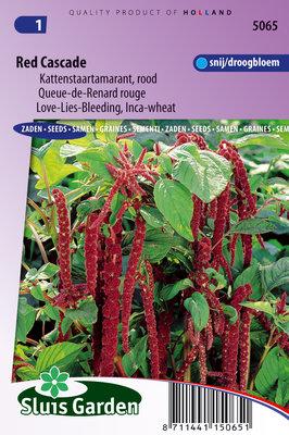 Kattenstaart Zaden, Rood Cascade Red (Amaranthus)