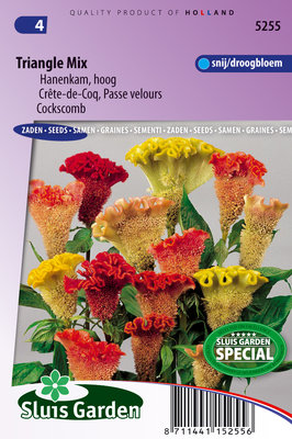 Hanenkam zaden, Triangle mix (Celosia)