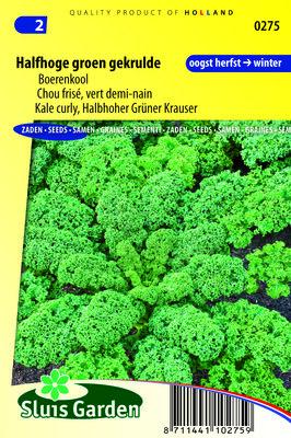 Boerenkool Zaden, Halfhoge Groene Gekrulde