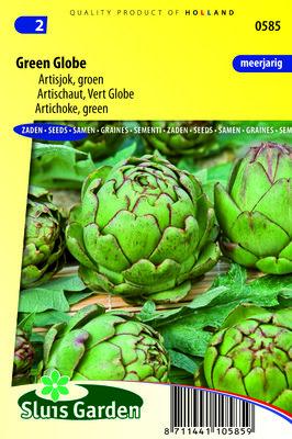 Artisjok, Green Globe (Groene)