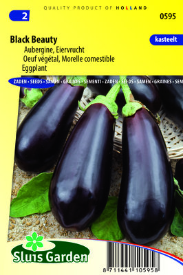 Aubergine Zaden, Black Beauty