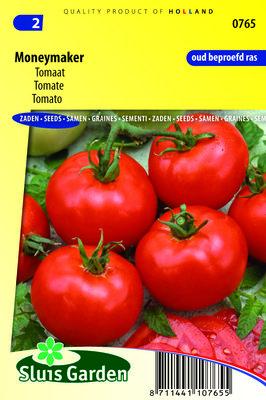 Tomaat Zaden, Moneymaker (tomaten)