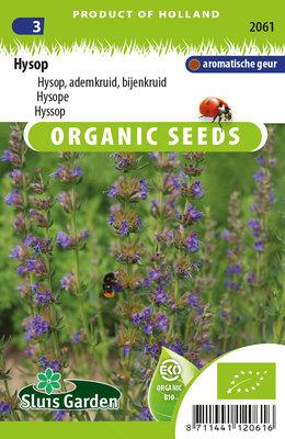 Hysop Zaden, Bijenkruid | BIO