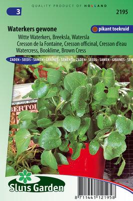 Waterkers zaden, Gewone Witte (watersla)