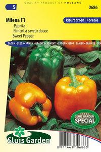 Paprika zaden kopen, Milena F1 | Moestuinland
