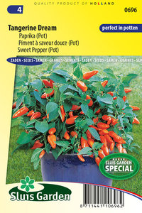 Potpaprika zaden kopen, Paprika Tangerine Dream   Moestuinland
