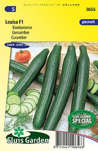 Komkommer zaden kopen, Louisa F1 | Moestuinland