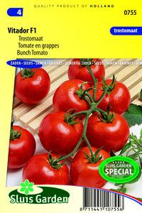 Tomaten zaden kopen, Vitador F1 | Moestuinland