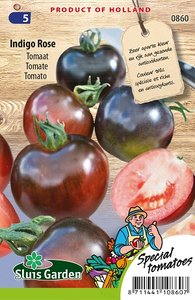 Tomaten zaden kopen, Indigo Rose (roze tomaten)   Moestuinland
