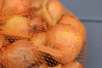 Plantsjalotten kopen Sjalot, Yellow Moon (500 gram) | Moestuinland
