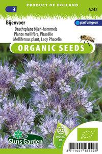Phacelia zaden kopen, Bijenvoer drachtplant | Moestuinland