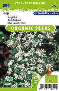 Zaden voor biologische anijs - Moestuinland