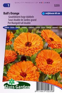 Goudsbloem zaden, Ball's Orange (Calendula officinalis)