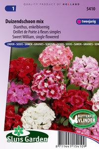 Duizendschoon zaden kopen, Dianthus enkelbloemig | Moestuinland