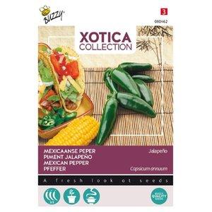 jalapeno zaden kopen, mexicaanse peper | Moestuinland
