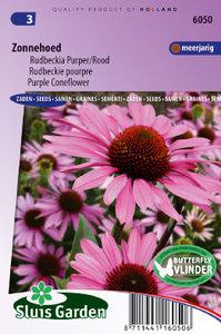 Zonnehoed zaden kopen, Rudbeckia (Echinacea purpurea)   Moestuinland