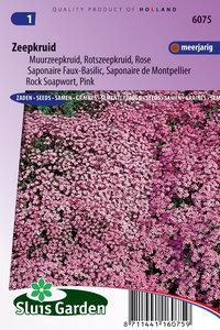 zeepkruid zaden kopen? moestuinland.nl