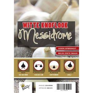 Winterknoflook kopen, Messidrome (250 gram) | Moestuinland