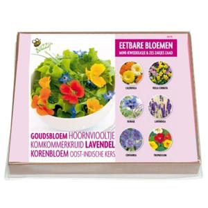 Mini Kweekset eetbare bloemen kopen, Compleet set van 6 | Moestuinland