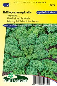 Zaden voor Boerenkool Halfhoge - Moestuinland