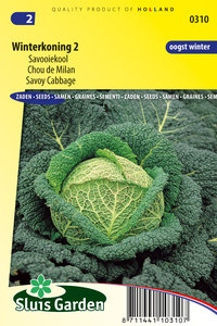zaden kopen voor savooiekool - Moestuinland