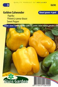 Gele paprika zaden kopen | Golden California Wonder