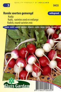 Radijs zaden kopen, Ronde soorten gemengd mix   Moestuinland