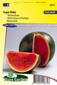 Meloen Zaden Kopen   Moestuinland