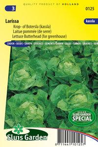 zaden kopen voor botersla - Moestuinland