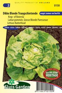 zaden voor krop sla kopen - Moestuinland
