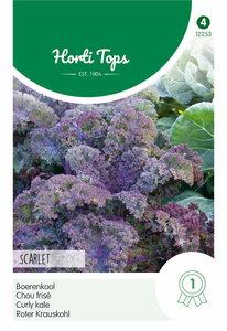 Boerenkool zaden kopen, Paars Scarlet Horti Tops | Moestuinland