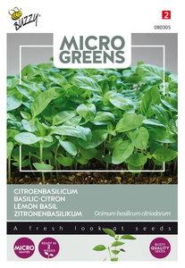 Citroenbasilicum Zaden Kopen, Micro Greens   Moestuinland