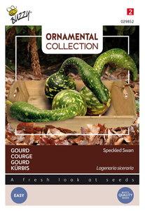 Gourd zaden kopen, sierpompoen speckled swan | Moestuinland