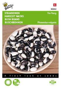Yin-Yang bonen zaden kopen, Stambonen droogboon (Okrabonen)   Moestuinland
